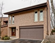 1731 Wildberry Drive Unit A, Glenview image