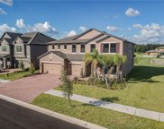 10318 Clover Pine Drive, Tampa image