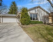 6528 Deerpath Court, Lisle image