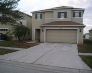 7416 Dragon Fly Loop, Gibsonton image