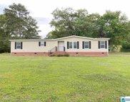375 Old Springville Rd, Odenville image