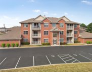 20345 South Rainford Drive Unit 2A, Frankfort image
