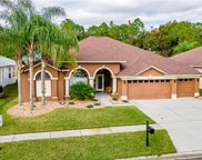 18024 Royal Forest Drive, Tampa image