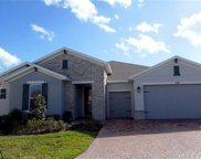 737 Quail Hill Court, Poinciana image