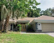 2115 Oake Leaf Circle, Mount Dora image