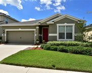 11241 Spring Point Circle, Riverview image