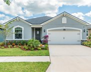 12938 Satin Lily Drive, Riverview image
