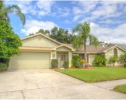 2517 Skipper Trail, Clearwater image