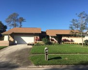 2408 Indian Trail W, Palm Harbor image