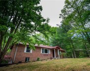 219  Trappers Trail, Hendersonville image