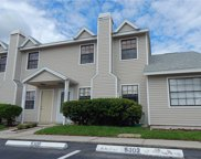 5303 Ladywell Court, Tampa image
