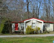 198 Hillcrest Rd, Oneonta image