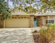1132 Windy Way, Apopka image
