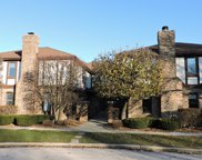 12249 South Arbor Trail Unit G2, Palos Heights image