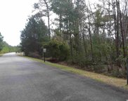 LOT 1 Red Wolf Trail, Myrtle Beach image