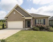 234 Reedy Springs Lane, Greenville image