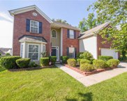16831 Macanthra, Charlotte image