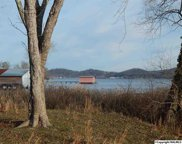 385 Warrenton Shores Drive, Guntersville image