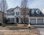 14321 LADDERBACKED DRIVE, Gainesville image