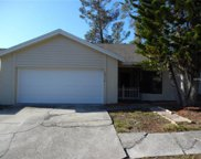 10916 Livingston Drive, New Port Richey image