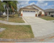 277 Indian Point Circle, Kissimmee image