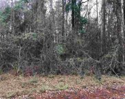 Lot 17 Yauhanna Lake Dr., Georgetown image