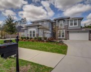 1035 AUTUMN PINES DR, Orange Park image