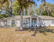 6213 Canopy Oaks Court, New Port Richey image