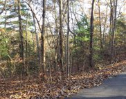 LT10 Forest Drive Road, Blairsville image