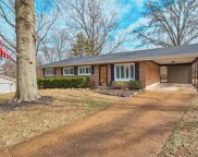 12 Country Squire  Lane, St Louis image