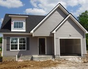 4624 Springstead Trail, Lot 138, Antioch image