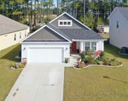 230 Palmetto Green Dr., Longs image