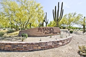 Search Homes and Luxury Living at Aviano at Desert Ridge