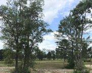 8796 Maple Ash Trail Ne, Leland image