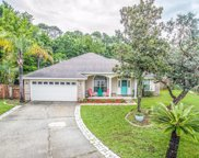 3443 DEERFIELD POINTE DR, Orange Park image
