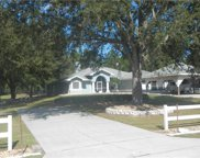 32533 Greenwood Loop, Wesley Chapel image