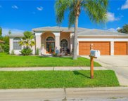 2523 Saddlewood Lane, Palm Harbor image