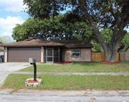 10908 Covey Court, Tampa image