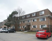 4158 Cove Lane Unit 2E, Glenview image
