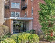 110 Draper  Lane Unit #SS2, Dobbs Ferry image