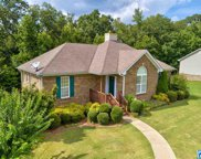 205 Crooked Creek Ln, Odenville image