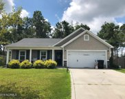 421 Blue Pennant Court, Sneads Ferry image