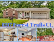 1217 Forest Trails, Fenton image