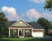 6774 Pleasant Gate Lane Lot 282, College Grove image