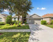12707 Whitney Meadow Way, Riverview image