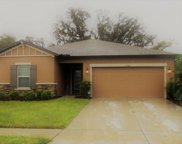 12358 Chaya Court, Spring Hill image