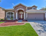 16331 Dinsdale Drive, Spring Hill image