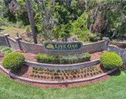 14112 Oakwood Cove Lane, Orlando image