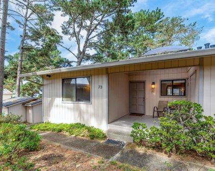 250 Forest Ridge Rd 73, Monterey