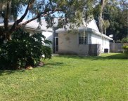 3139 Cloverplace Drive, Palm Harbor image